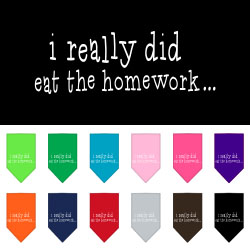 I really did eat the Homework Screen Print Bandana