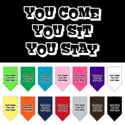 You Come, You Sit, You Stay Screen Print Bandana