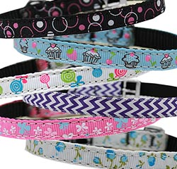 Cat Safety Collars