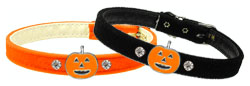 Pumpkin Charm Collar