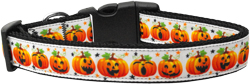 Pumpkin Parade Dog Collar