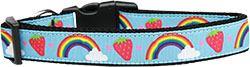 Rainbows and Berries Nylon Dog Collar