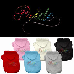 Rainbow Colored Pride Hoodies