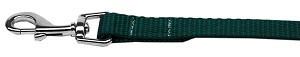 Plain Nylon Pet Leash 3/8in by 6ft Green