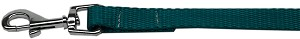 Plain Nylon Pet Leash 1in by 6ft Teal