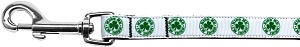 Kiss Me - I'm Irish Nylon Ribbon Pet Leash 5/8 inch wide 6Ft Lsh