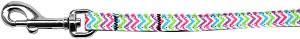 Summer Chevrons Nylon Ribbon Pet Leash 3/8 inch wide 4Ft Lsh