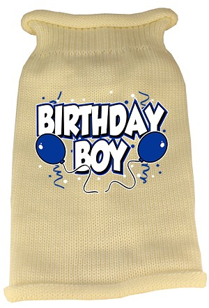 Birthday Boy Screen Print Knit Pet Sweater MD Cream
