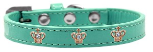 Gold Crown Widget Dog Collar Aqua Size 12