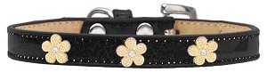Gold Flower Widget Dog Collar Black Ice Cream Size 12