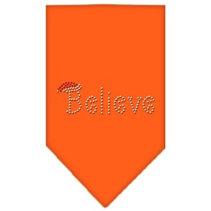 Believe Rhinestone Bandana Orange Small