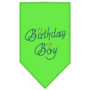 Birthday Boy Rhinestone Bandana Lime Green Small