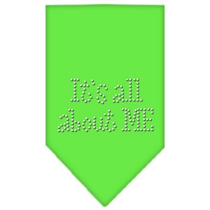 Its All About Me Rhinestone Bandana Lime Green Large