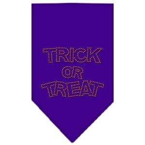 Trick or Treat Rhinestone Bandana Purple Large