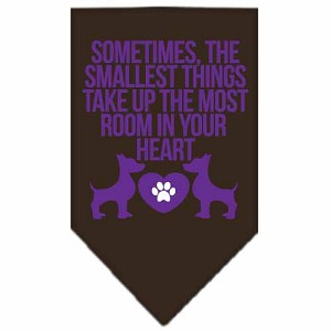 Smallest Things Screen Print Bandana Brown Large