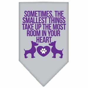 Smallest Things Screen Print Bandana Grey Large