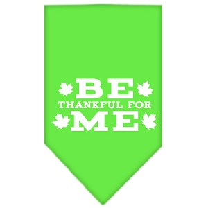 Be Thankful for Me Screen Print Bandana Lime Green Large