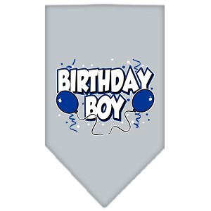 Birthday Boy Screen Print Bandana Grey Large