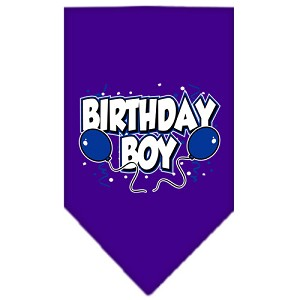 Birthday Boy Screen Print Bandana Purple Small