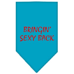 Bringin Sexy Back Screen Print Bandana Turquoise Small
