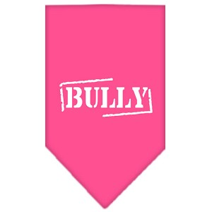 Bully Screen Print Bandana Bright Pink Large