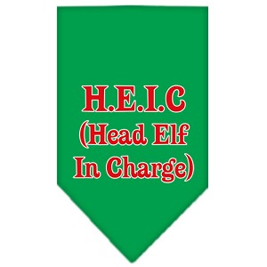 Head elf In Charge Screen Print Bandana Emerald Green Small