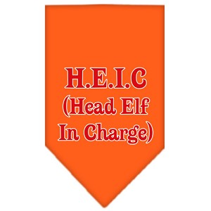 Head elf In Charge Screen Print Bandana Orange Small