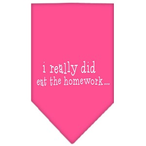 I really did eat the Homework Screen Print Bandana Bright Pink Small