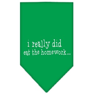 I really did eat the Homework Screen Print Bandana Emerald Green Small