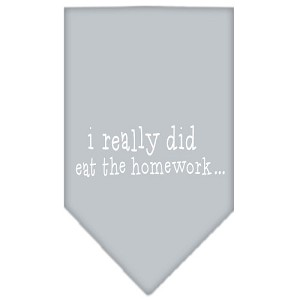 I really did eat the Homework Screen Print Bandana Grey Small
