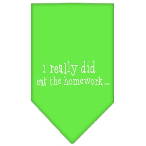I really did eat the Homework Screen Print Bandana Lime Green Small