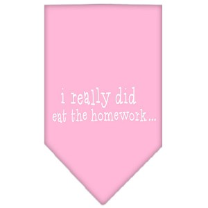 I really did eat the Homework Screen Print Bandana Light Pink Large