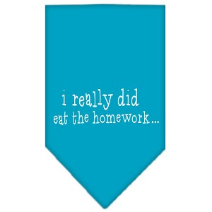 I really did eat the Homework Screen Print Bandana Turquoise Large