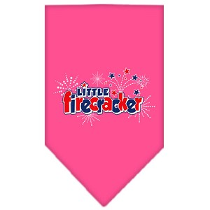 Little Firecracker Screen Print Bandana Bright Pink Small