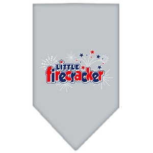 Little Firecracker Screen Print Bandana Grey Small