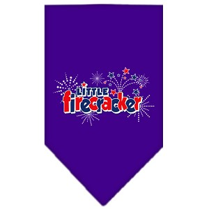 Little Firecracker Screen Print Bandana Purple Large