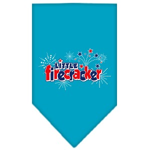 Little Firecracker Screen Print Bandana Turquoise Small