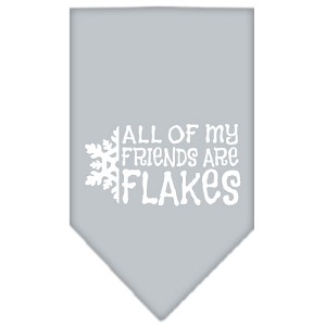 All my friends are Flakes Screen Print Bandana Grey Small