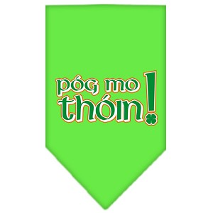 Pog Mo Thoin Screen Print Bandana Lime Green Small