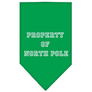 Property of North Pole Screen Print Bandana Emerald Green Small