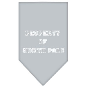 Property of North Pole Screen Print Bandana Grey Small