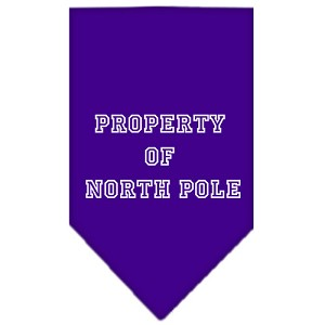 Property of North Pole Screen Print Bandana Purple Small