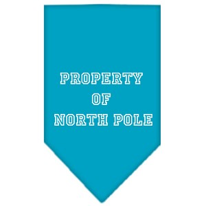 Property of North Pole Screen Print Bandana Turquoise Large