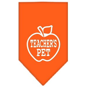 Teachers Pet Screen Print Bandana Orange Small