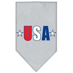 USA Star Screen Print Bandana Grey Large