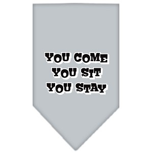 You Come, You Sit, You Stay Screen Print Bandana Grey Large
