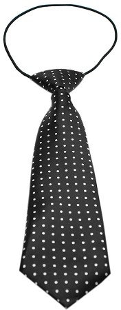 Big Dog Neck Tie Swiss Dot Black