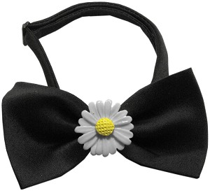 White Daisies Chipper Black Bow Tie