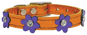 Flower Leather Metallic Apricot w/ Metallic Purple Flowers 12