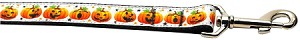 Pumpkin Parade 1 inch wide 6ft long Leash